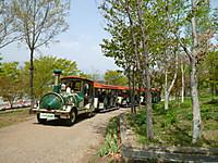P1130228